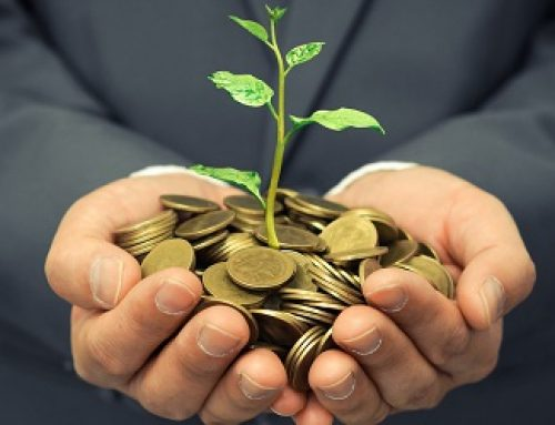 How you can invest in the environment